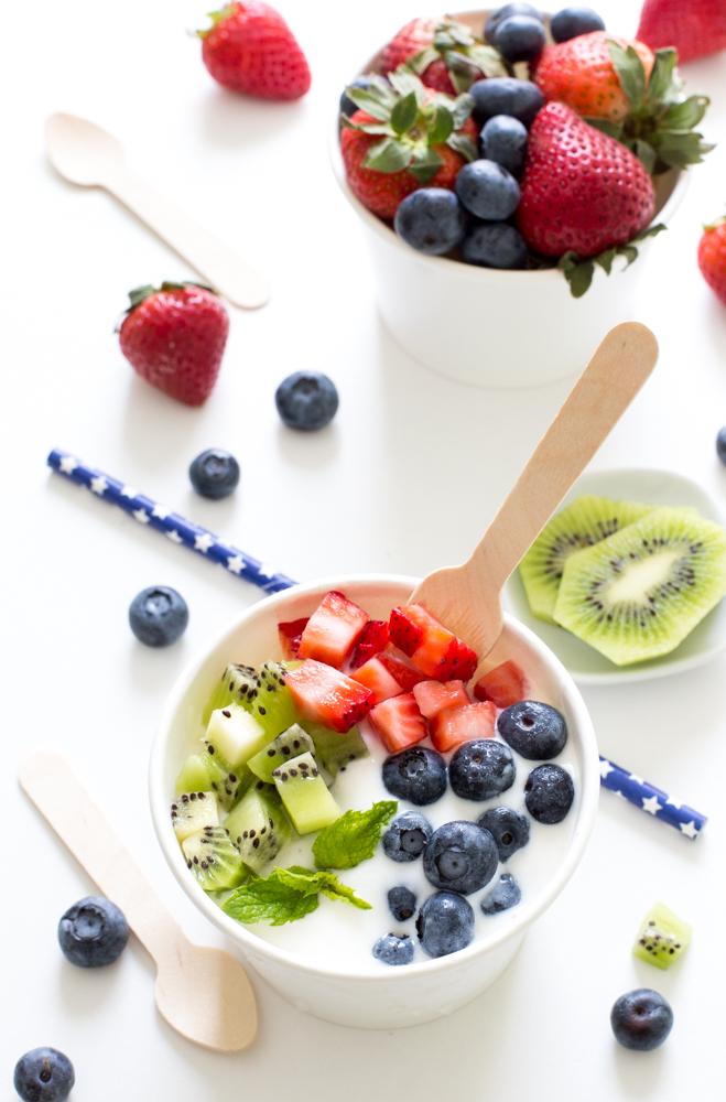 4 Ingredient Vanilla Frozen Yogurt