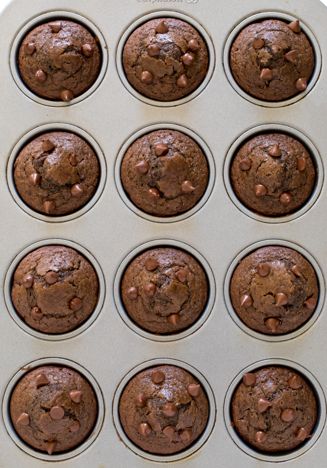 Chocolate Muffins | chefsavvy.com