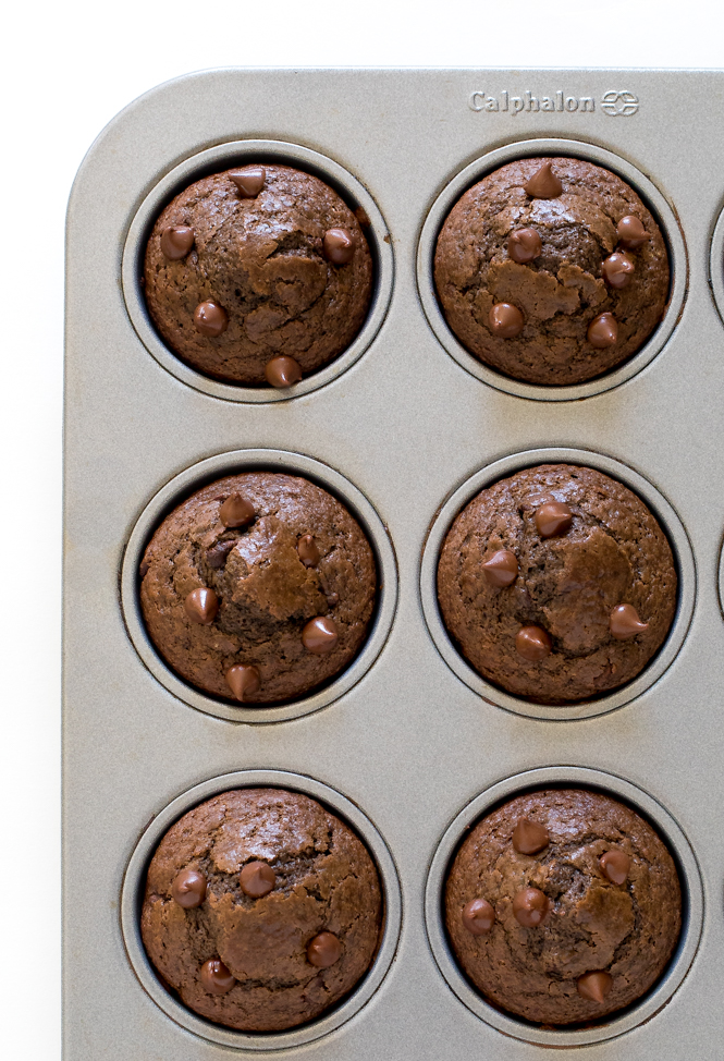 Double Chocolate Muffins | chefsavvy.com