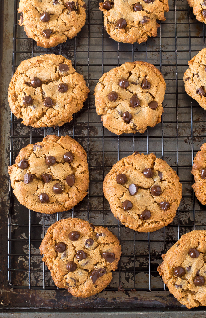 Peanut Butter Chocolate Chip Cookies | chefsavvy.com