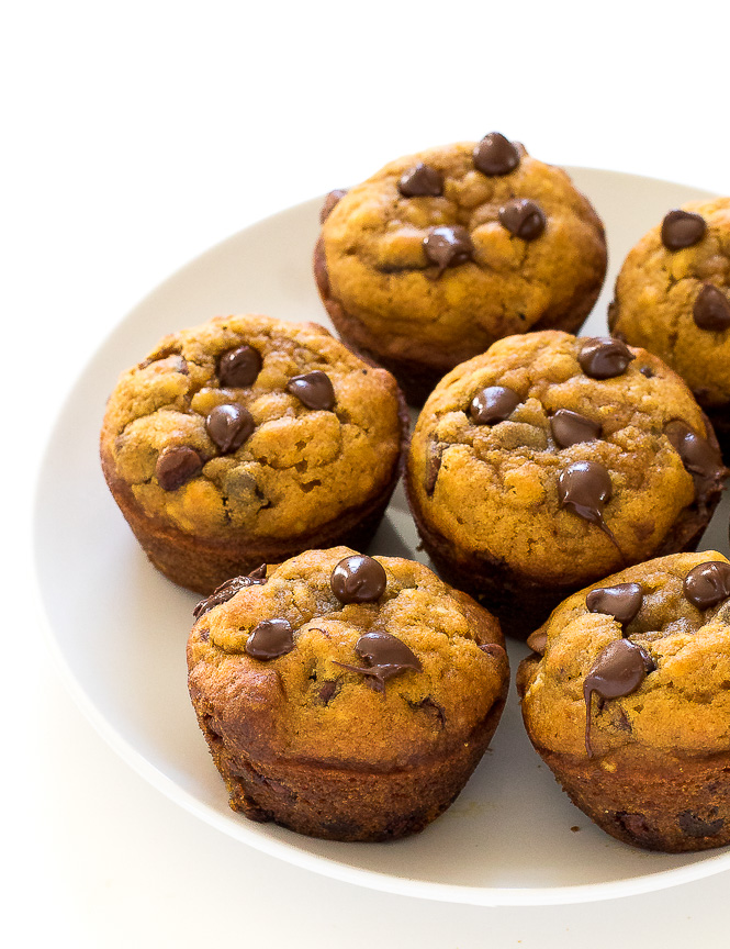 Pumpkin Chocolate Chip Muffins | chefsavvy.com