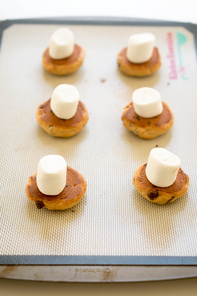 Peanut Butter and chocolate chip S'mores Sandwich Cookies   chefsavvy.com #recipe #dessert #cookie #smores